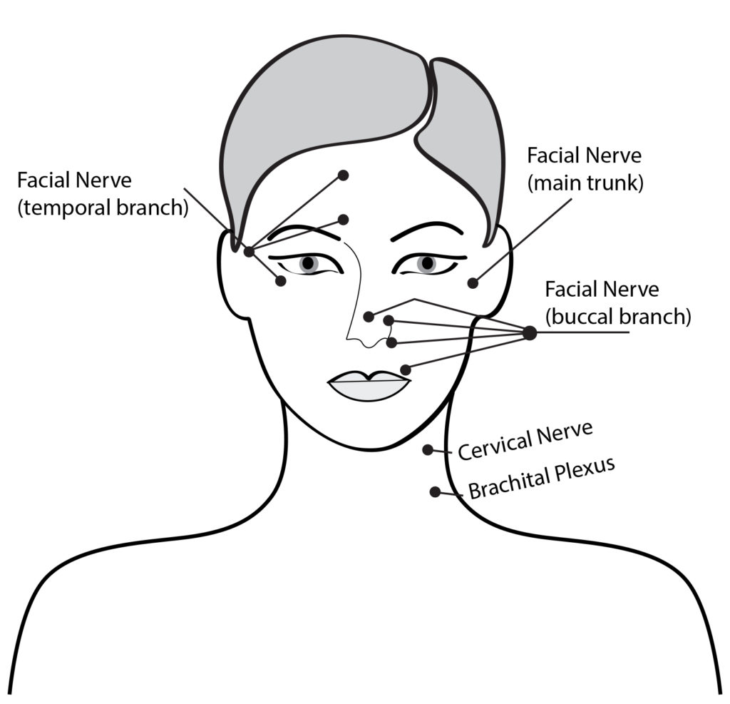 How to Perform Facial Massage | Facial Massage Benefits ...